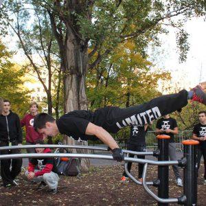 International Street Workout - Event 2015 - Walk21 Vienna Präsentation der Körperbeherrschung - Genau kostenlose Motivation - Gratis Training – sicher inklusive Tricks - Fitness - Calisthenics - Vienna Österreich - Austria Wien