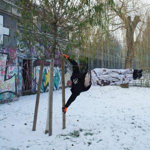 International Street Workout ISW - New Year Workout - Roßauer Lände - Human Flag - Grüner Baum - neues Leben