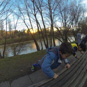 International Street Workout ISW - Österreich Wien - Vienna Austria - Roßauer Lände - Training - Calisthenics - Nur wer die Wurzeln kennt, weiß um die Kraft der Zweige