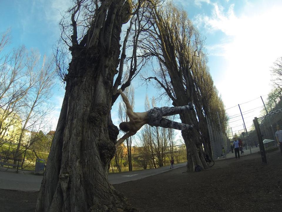 International Street Workout ISW - Vienna Austria- Training - Calisthenics - Der lange Ast eines Baumes findet am Stamm nur dann Kraft und Halt, wenn seine Wurzeln stark sind