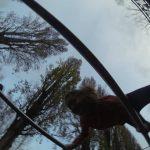International Street Workout ISW - Österreich Wien - Vienna Austria - Roßauer Lände - Training - Calisthenics - Wer sich auf die Kraft der Heiterkeit verläßt, wird vom Glück nur ganz selten verlassen